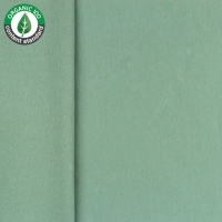 Bio French Terry old green 62783