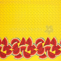 Stenzo Jersey tropical melone border yellow 11624-08