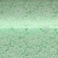 Spitze Lace Eva mint MR1011-022