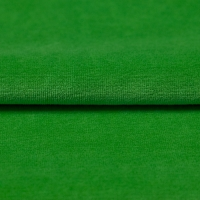 Nicky Velours Uni green RS0003-225
