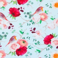 Digital Printing Jersey robin roses mint 62335