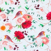 Digital Printing Jersey robin roses offwhite 62331